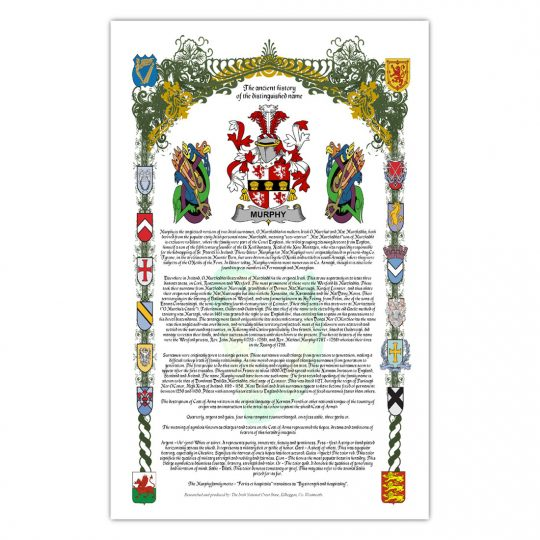 Family Name Armorial History